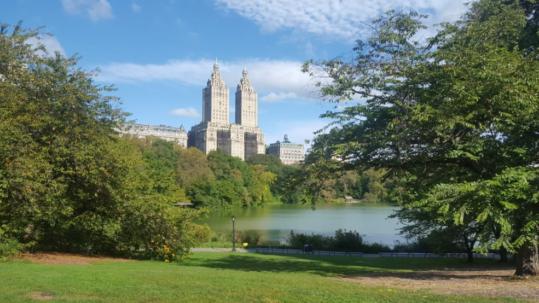 Un parco a New York