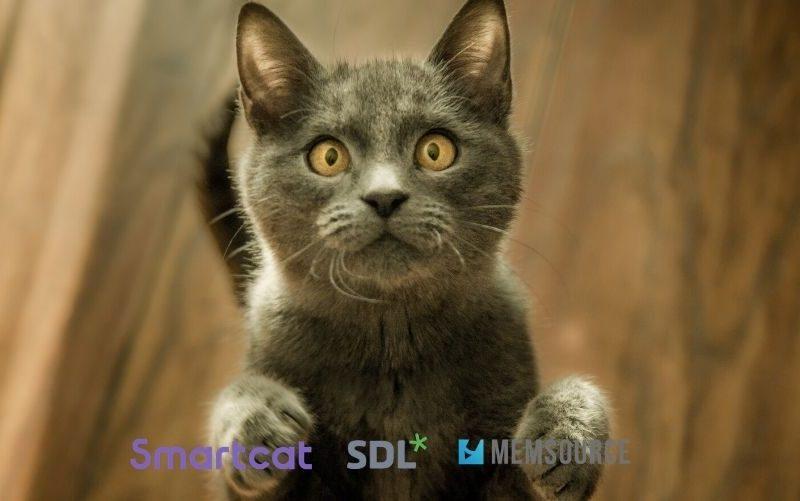 3 cat tool gratuiti: Memosource, SDL Trados e Smartcat
